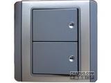 品牌:施耐德奇胜 Clipsal&#10名称:10A 带LED指示横式大按板双联单控开关(灰+银)&#10型号:E3032H1(EBGS)