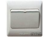 品牌:TCL-罗格朗 TCLLegrand 名称:一位单极大按钮开关 型号:KG31/1/2B
