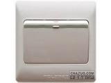 品牌:TCL-罗格朗 TCLLegrand 名称:一位单极荧光大按钮开关 型号:KG31/1/2BY