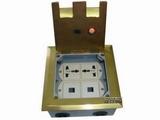 品牌:飞利富 Feilifu 名称:二位万用电源+两位网络地面插座 型号:HTD-146