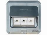 品牌:西蒙 Simtone&#10名称:不锈钢面两位电话+电脑地面插座&#10型号:TD120-F27H