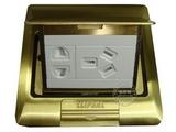 品牌:施耐德奇胜 Clipsal&#10名称:弹起式铜地面插座&#10型号: E224C10/2