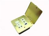 品牌:基讯 EXCEL&#10名称:金色超薄强弱电组合铜地插&#10型号:GC-DT/CB/F3